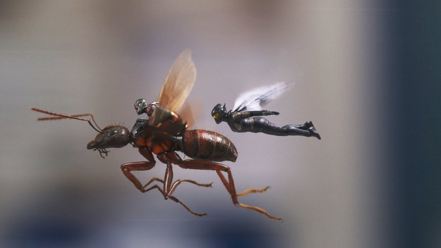Ant-Man and the Wasp – Sometimes Smaller is Better