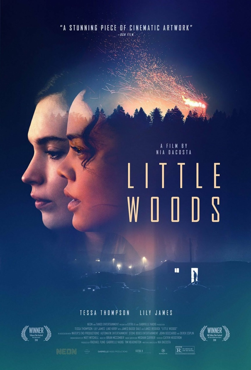 The Quiet Brilliance of Nia DaCosta's Little Woods